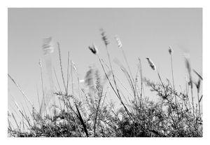 Tiempo y viento