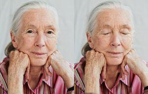Portrait Jane Goodall