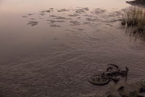 Bike weighted down with stones in swamp