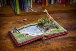 Books Can Take You Anywhere