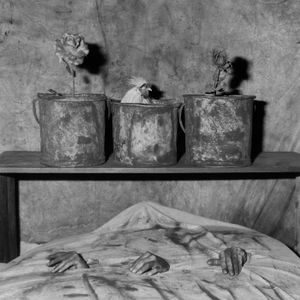 Three hands, 2006 © Roger Ballen
