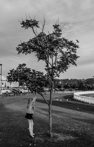 An Extention of Herself, Amalia and her love of Trees, we visit this small park when we are waiting for her ballet class to start, Unknown Park Oxenford QLD Australia 2014.