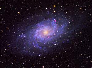The Triangulum Galaxy (Messier 33)