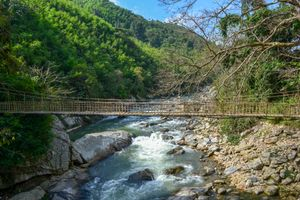 Nature and bridge
