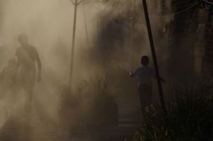 Humans in the mist