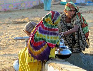 fetching water, Pushkar Camel Fair, Rajasthan, India