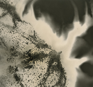 Untitled work of Fire .05-08-13 8x8.5 Unique gunpowder generated gelatin silver print.
