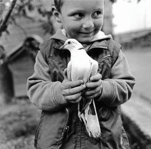 Andoni and his bird. Ibarrolle.