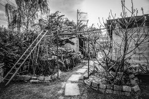 Kwaros' garden