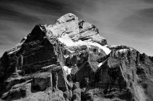Wetterhorn - Swiss Alps
