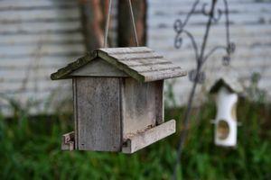 Bird Houses, Maine