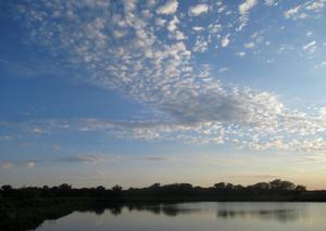 Kansas Wetlands-Daily Journeys-4
