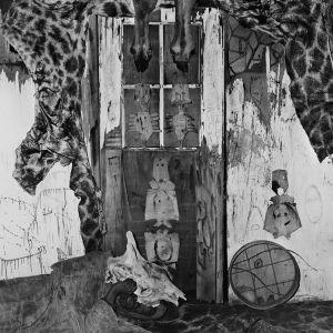 Giraffe house, 2007, from the series Boarding House © Roger Ballen