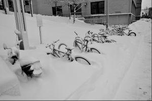 Bikes in a Blizzard