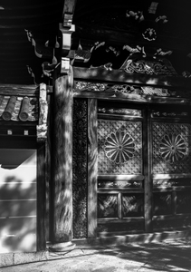 Temple gate in dappled light- Tofukuji, Kyoto.