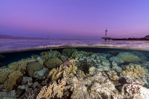 Sunset upon the coral reefs of Eilat, Red Sea