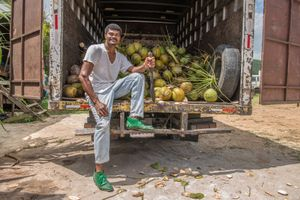 Coconut Seller, Montego Bay, Jamaica