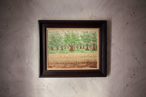 Olive trees, 2012 © Andreas Tsonidis