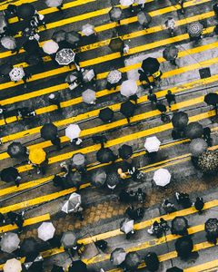 The Umbrella Revolution