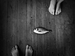 fisherman next friend