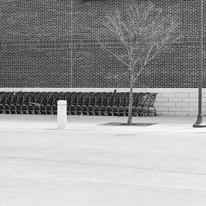 Carts, 2014