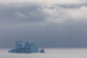 Iceberg series - Surrealism 1