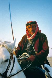 Beduine auf seiner asilen Stute