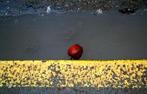 Rain drops, 2007