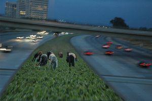 Freeway Farming