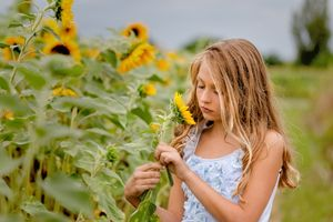 Thoughtful princess in the sunflower field
