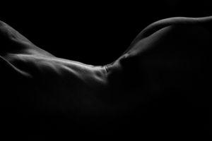 Dark Bodies - Shape