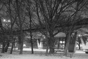 Tension under the flyover 10 - concrete, snow and trees