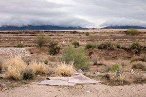 Rug Landscape, Tucson, AZ, 2008 © Patti Hallock
