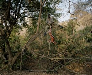 untitled, leopard hunter, zimbabwe-from the series 'hunters'-David Chancellor