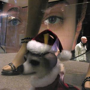 Windows. Galerie marchande Champs Elysées - Paris 2006