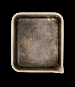 George Tice's Developer Tray © John Cyr