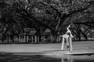 The angel from Sukhothai kingdom #9