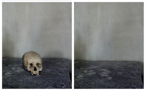 """Skull, from """"Cezanne's Objects,"""" 2013 © Joel Meyerowitz. From the book """"Where I Find Myself."""" Published by Laurence King."""