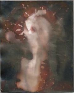 "Untitled [Oriental Seagull Portrait FB-N Warm Tone Fiber Base Grade 2 Semi-matte Paper], 2014, unique silver gelatin chemigram, 10""x8"""