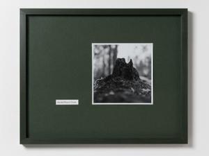 Aoraki/Mount Cook: