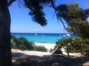 Saleccia by sea