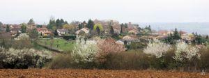 Belmont d'Azergues au printemps