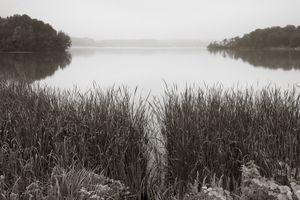 Pontoosuc lake  -  © Shaun OBoyle