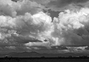 Back Yard Clouds
