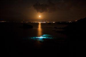 """night vision fishermen"""