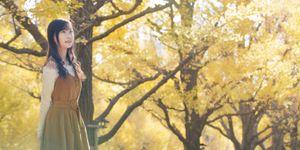 秋の唄はイチョウ