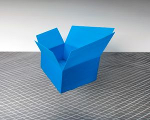 Cardboard Box Decoy, 2016