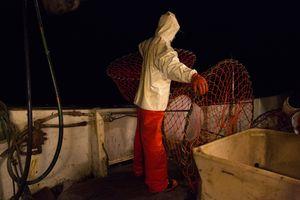 Steeve, fishing snow crabs, Sisimiut