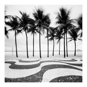 Copacabana Palms, Rio de Janeiro, Brazil, 2010. Silver gelatine prints from digital dataon Ilford Galerie Digital Fibresize. 60x60cm and 120 x 120cm, sepia & selenium toned