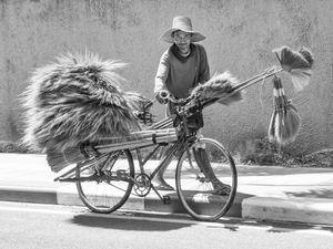 Thai Brush Vendor